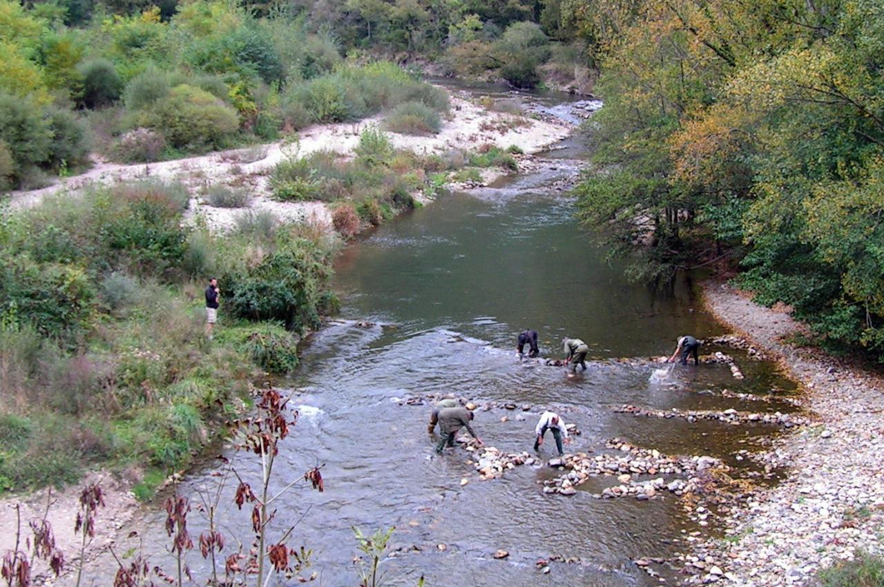les barrages et la rivière aprés action des bénévoles